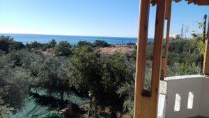 Olivenernte Kreta - Blick vom Wohnhaus