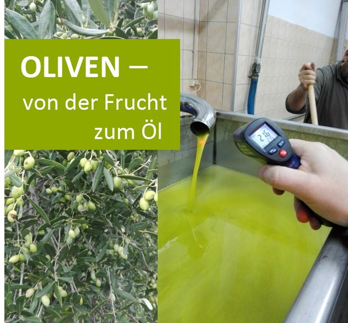 Olive Frucht Öl